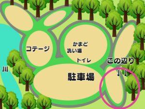 昭和の森 一本松側 テントサイト