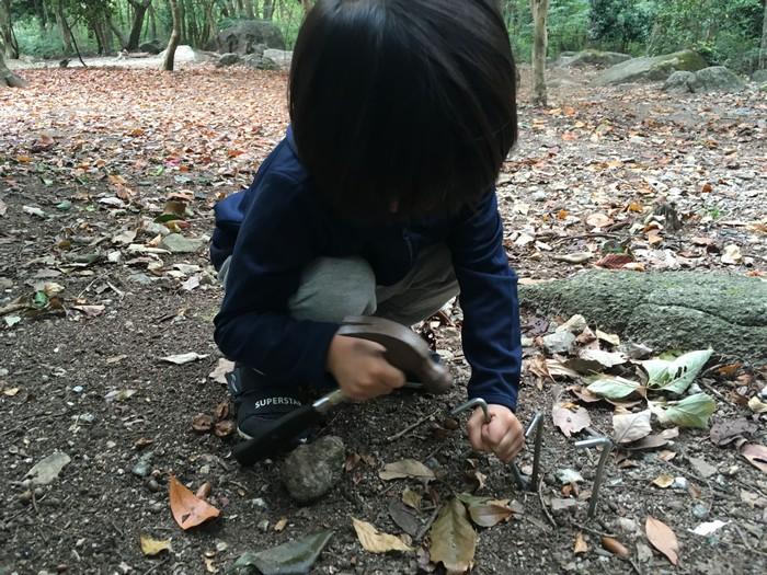 昭和の森 猫石側