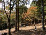 昭和の森 猫石側 全体図
