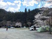 若杉楽園キャンプ場 テントサイト
