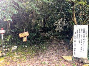 昭和の森 キャンプ 登山道