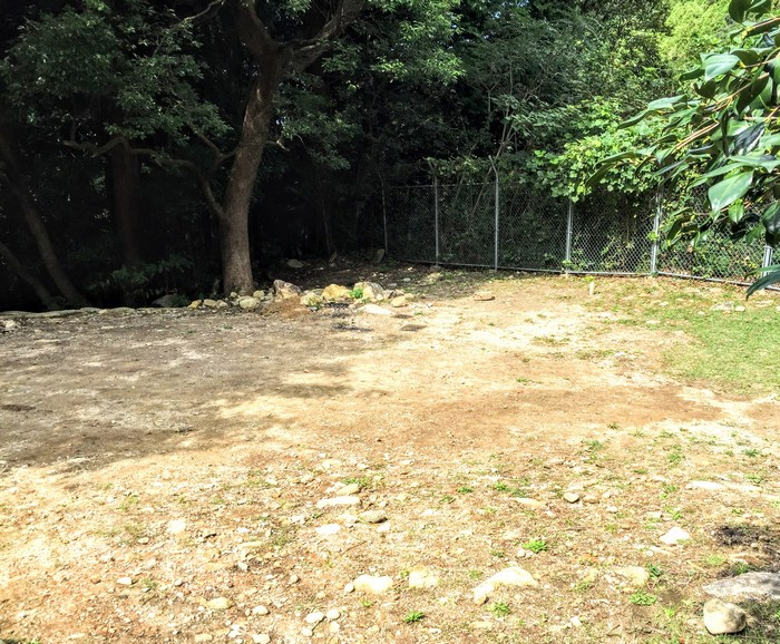 昭和の森 キャンプ 駐車場周辺