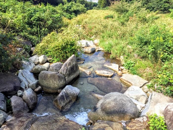 昭和の森 キャンプ 川遊び