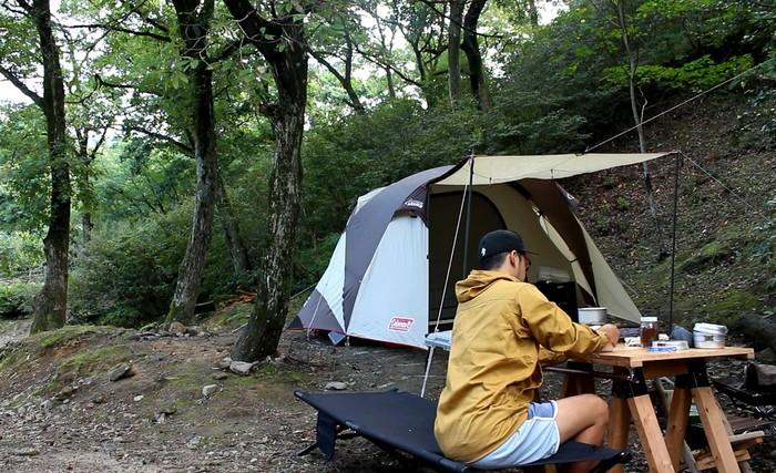 昭和の森 キャンプ場 雰囲気