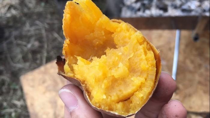 キャンプ料理 焼き芋
