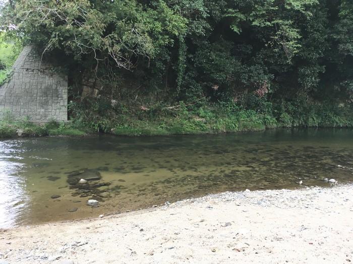 源じいの森 第一キャンプ場 川